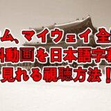 サム、マイウェイ全話の無料動画を日本語字幕で見れる視聴方法!