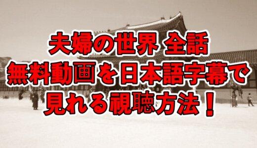夫婦の世界全話の無料動画を日本語字幕で見れる視聴方法!