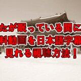 あなたが眠っている間に全話の無料動画を日本語字幕で見れる視聴方法!